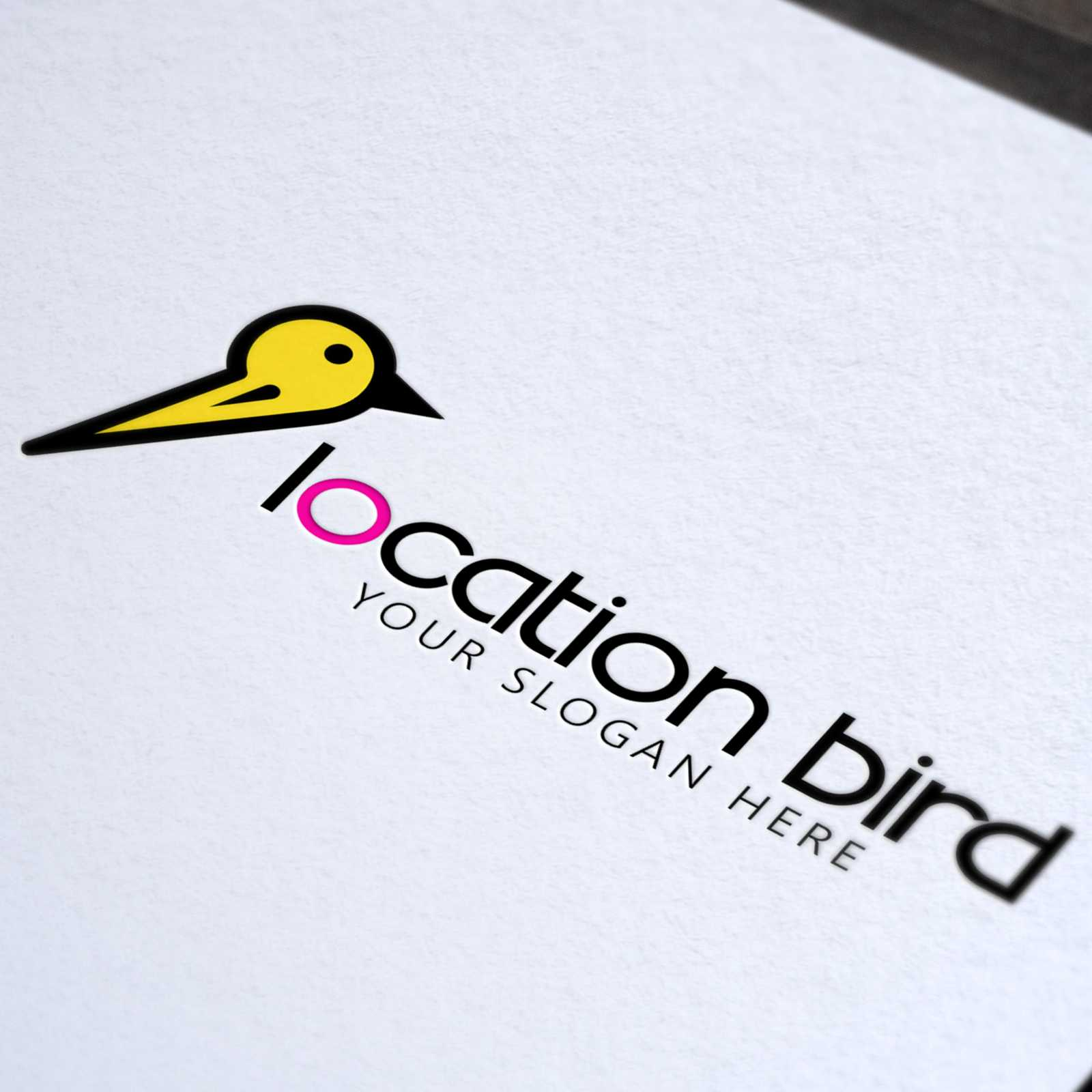 Location Bird